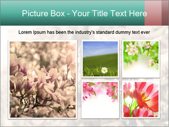 0000078096 PowerPoint Templates - Slide 19