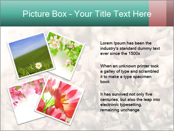0000078096 PowerPoint Templates - Slide 23