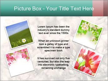 0000078096 PowerPoint Templates - Slide 24