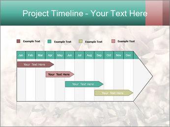 0000078096 PowerPoint Templates - Slide 25