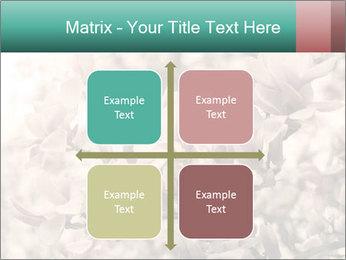 0000078096 PowerPoint Templates - Slide 37