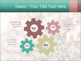 0000078096 PowerPoint Templates - Slide 47