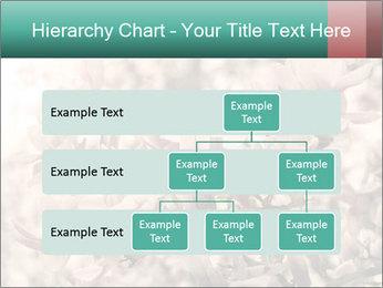 0000078096 PowerPoint Templates - Slide 67