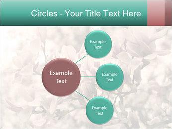 0000078096 PowerPoint Templates - Slide 79