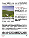 0000078096 Word Template - Page 4