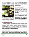 0000078098 Word Template - Page 4