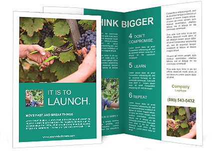 0000078113 Brochure Template