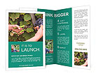 0000078113 Brochure Templates