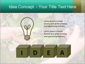 0000078113 PowerPoint Template - Slide 80