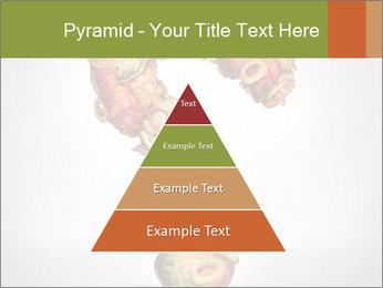 0000078115 PowerPoint Templates - Slide 30