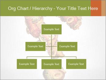 0000078115 PowerPoint Templates - Slide 66