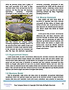 0000078123 Word Templates - Page 4