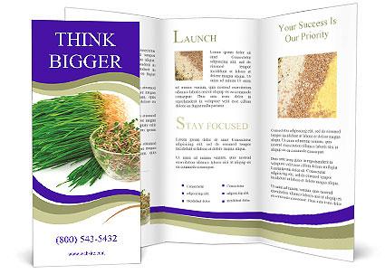 0000078126 Brochure Template