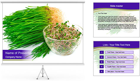 0000078126 PowerPoint Template