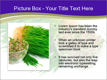0000078126 PowerPoint Templates - Slide 13