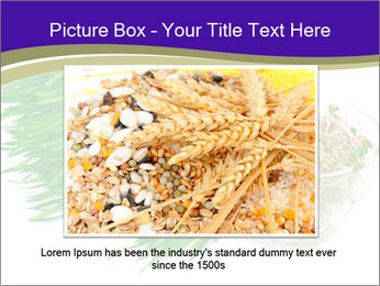 0000078126 PowerPoint Templates - Slide 15