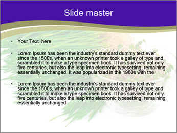 0000078126 PowerPoint Templates - Slide 2