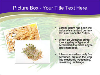 0000078126 PowerPoint Templates - Slide 20