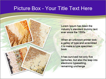 0000078126 PowerPoint Templates - Slide 23