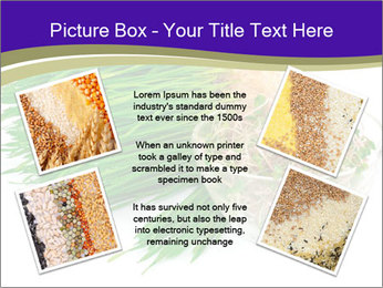 0000078126 PowerPoint Templates - Slide 24