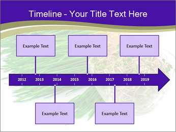 0000078126 PowerPoint Templates - Slide 28