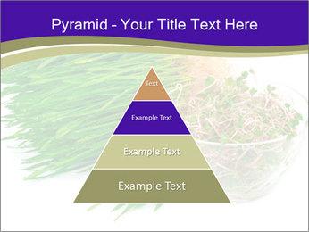 0000078126 PowerPoint Template - Slide 30