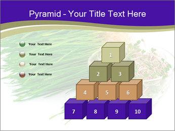 0000078126 PowerPoint Template - Slide 31