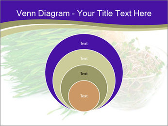 0000078126 PowerPoint Templates - Slide 34