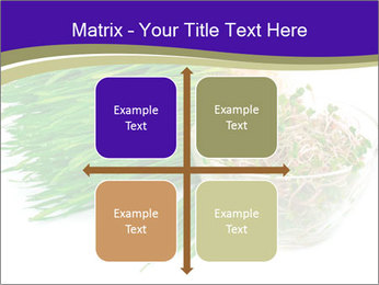 0000078126 PowerPoint Templates - Slide 37