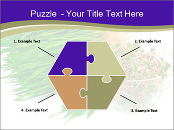 0000078126 PowerPoint Templates - Slide 40