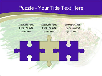 0000078126 PowerPoint Templates - Slide 42