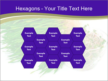 0000078126 PowerPoint Templates - Slide 44