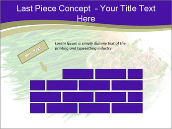 0000078126 PowerPoint Templates - Slide 46
