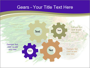 0000078126 PowerPoint Template - Slide 47