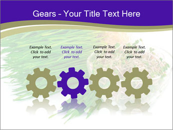 0000078126 PowerPoint Templates - Slide 48