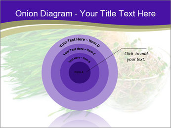 0000078126 PowerPoint Templates - Slide 61