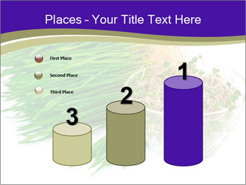 0000078126 PowerPoint Templates - Slide 65