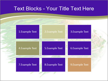 0000078126 PowerPoint Templates - Slide 68