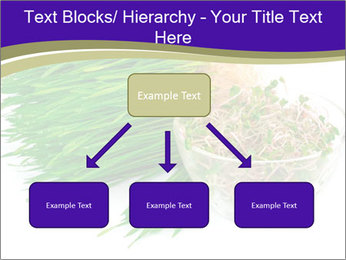 0000078126 PowerPoint Templates - Slide 69