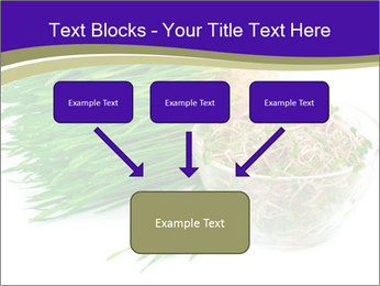 0000078126 PowerPoint Templates - Slide 70