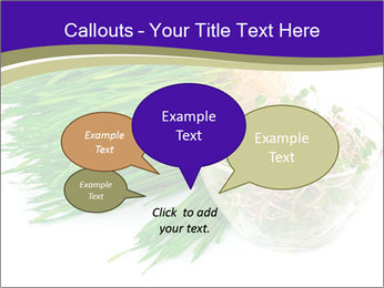 0000078126 PowerPoint Templates - Slide 73