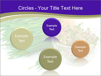 0000078126 PowerPoint Templates - Slide 77