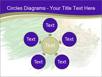 0000078126 PowerPoint Templates - Slide 78
