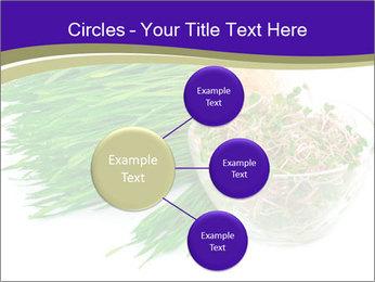 0000078126 PowerPoint Template - Slide 79