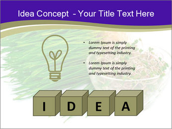 0000078126 PowerPoint Template - Slide 80