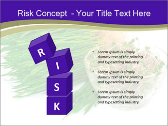 0000078126 PowerPoint Templates - Slide 81