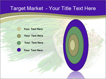 0000078126 PowerPoint Templates - Slide 84