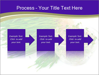0000078126 PowerPoint Templates - Slide 88