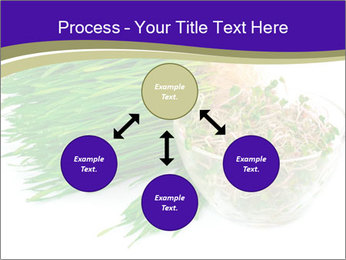 0000078126 PowerPoint Templates - Slide 91