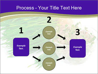 0000078126 PowerPoint Templates - Slide 92